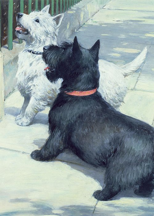Dog Greeting Card featuring the painting Black And White Dogs by Septimus Edwin Scott