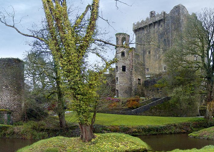 Ireland Greeting Card featuring the photograph Blarney Castle 3 by Mike McGlothlen