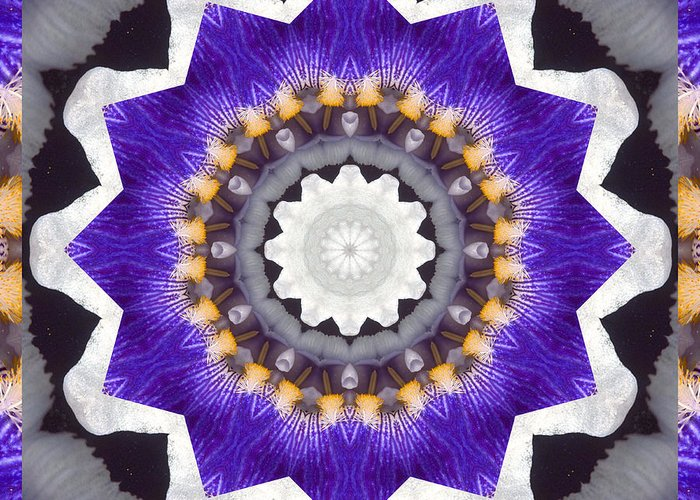 Mandalas Greeting Card featuring the photograph Bliss by Bell And Todd