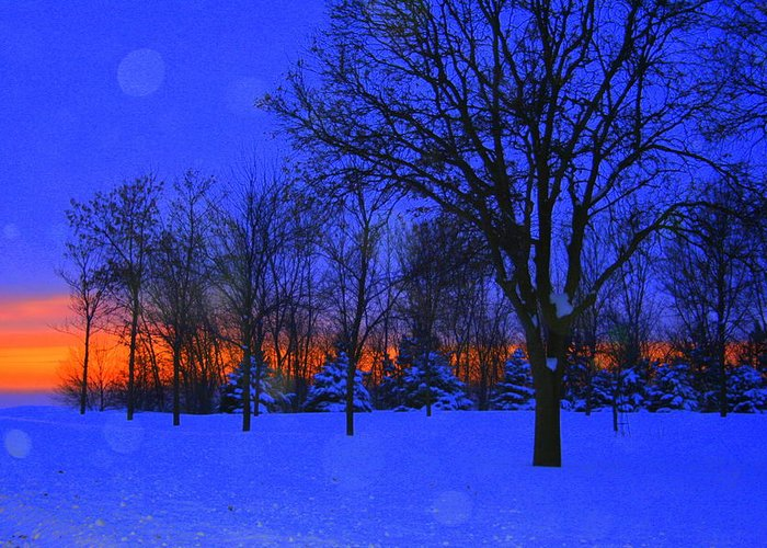 Landscape Greeting Card featuring the photograph Blizzard Blues 2 by Julie Lueders