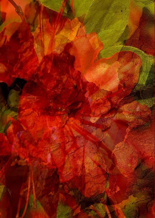 Abstract Greeting Card featuring the digital art Blood Rose by Tom Romeo