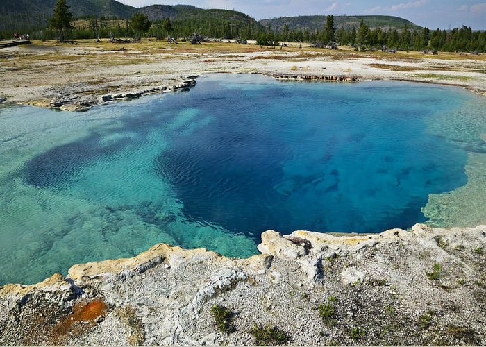 Hot Greeting Card featuring the photograph Blue Hot Springs Yellowstone National Park by Garry Gay
