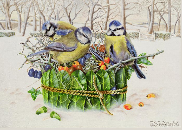 Winter; Christmas; Berries; Holly Berry; Bird Greeting Card featuring the painting Blue Tits In Leaf Nest by EB Watts