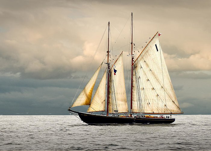 Windjammer Greeting Card featuring the photograph Bluenose by Fred LeBlanc