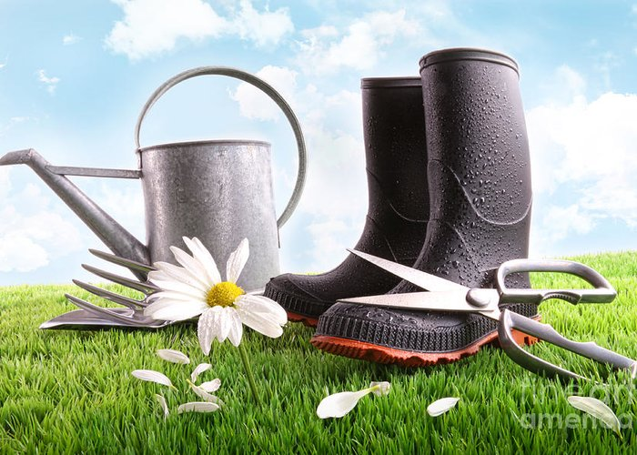 Abstract Greeting Card featuring the photograph Boots With Watering Can And Daisy In Grass by Sandra Cunningham