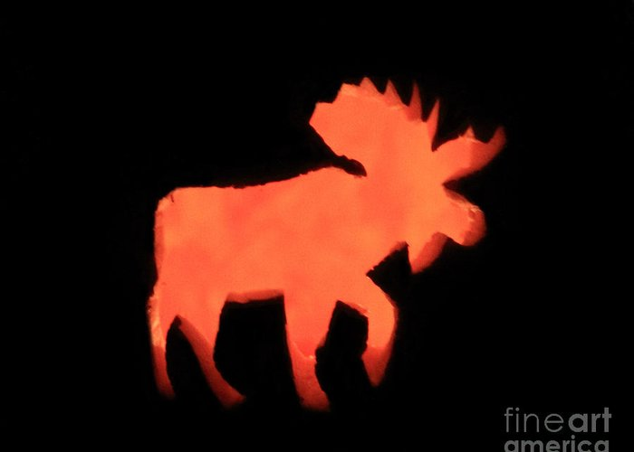 Moose Greeting Card featuring the photograph Bull Moose Pumpkin by Lloyd Alexander