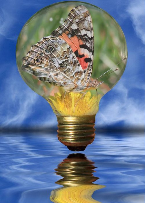 Lightbulb Greeting Card featuring the photograph Butterfly In Lightbulb by Shane Bechler