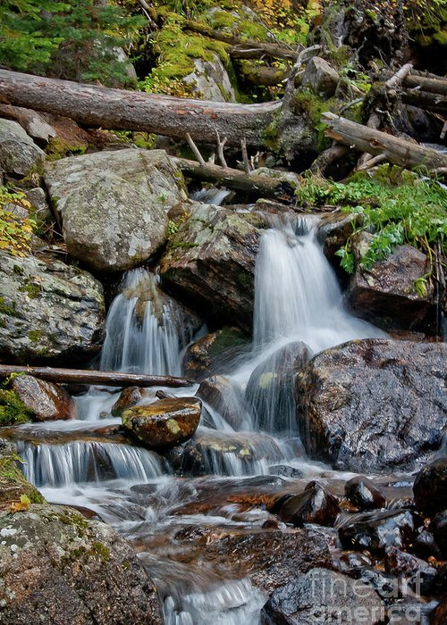 Calypso Greeting Card featuring the photograph Calypso Cascades by Brent Parks
