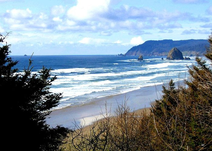 Vista Greeting Card featuring the photograph Cannon Beach Vista by Will Borden