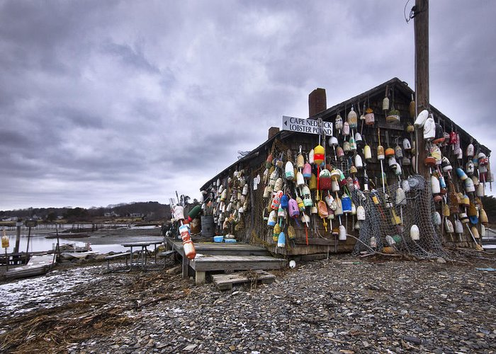 Cape Greeting Card featuring the photograph Cape Neddick Lobster Pound by Eric Gendron