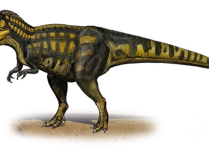 Horizontal Greeting Card featuring the digital art Carcharodontosaurus Iguidensis by Sergey Krasovskiy