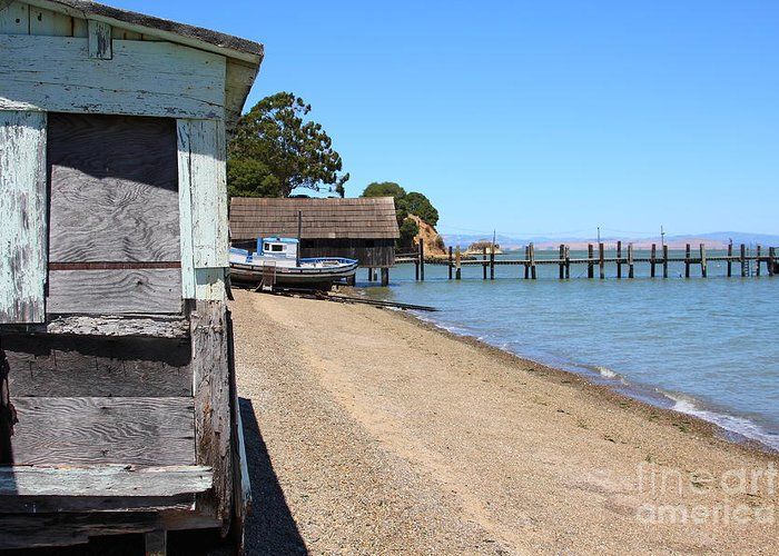China Camp Greeting Card featuring the photograph China Camp In Marin Ca by Wingsdomain Art and Photography