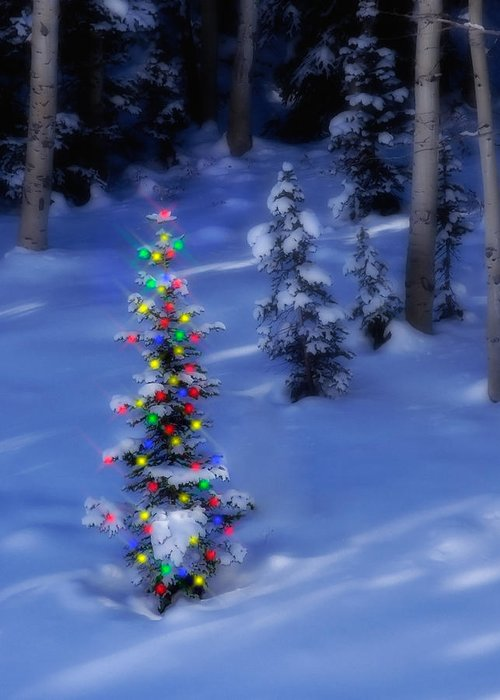 Christmas Tree Greeting Card featuring the photograph Christmas Tree In Snow by Utah Images