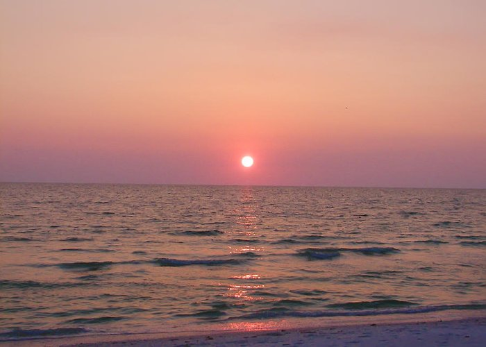 Florida Greeting Card featuring the photograph Clearwater Sunset by Bill Cannon
