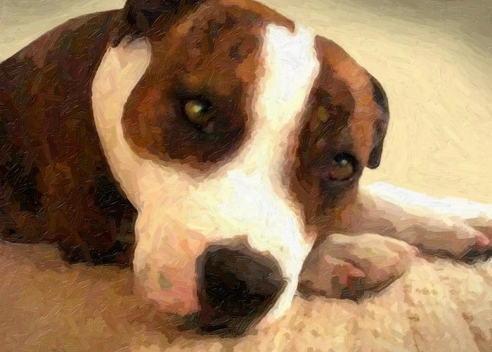 Staffordshire Bull Terrier Greeting Card featuring the painting Contentment by Michael Tompsett
