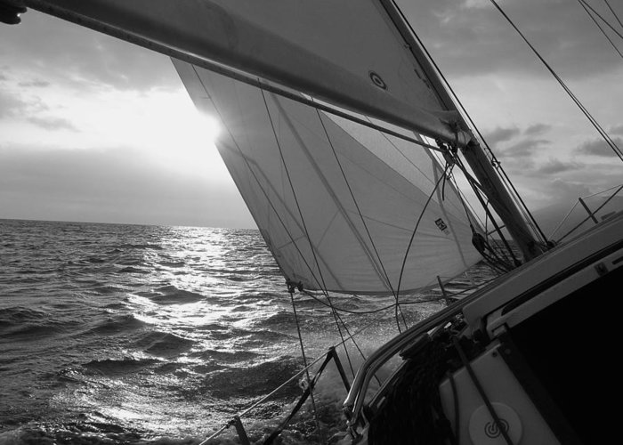 Coquette Sailing Maui Sunset Sails Sailboat Custin Ryan Black And White Water Ocean Spray Yacht Greeting Card featuring the photograph Coquette Sailing by Dustin K Ryan