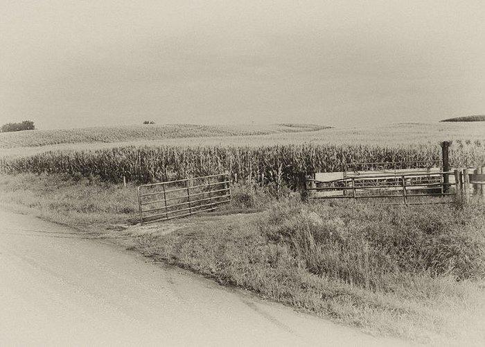 Corn Greeting Card featuring the photograph Corn Gate Rusty by Wilma Birdwell