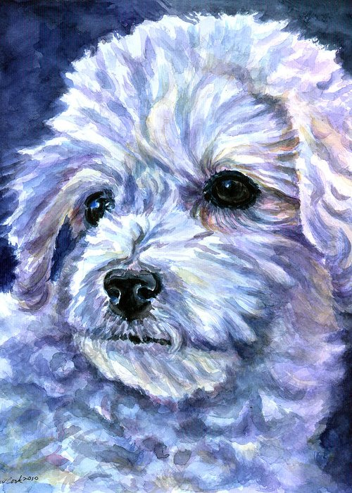 Bichon Frise Greeting Card featuring the painting Cotton Top by Lyn Cook