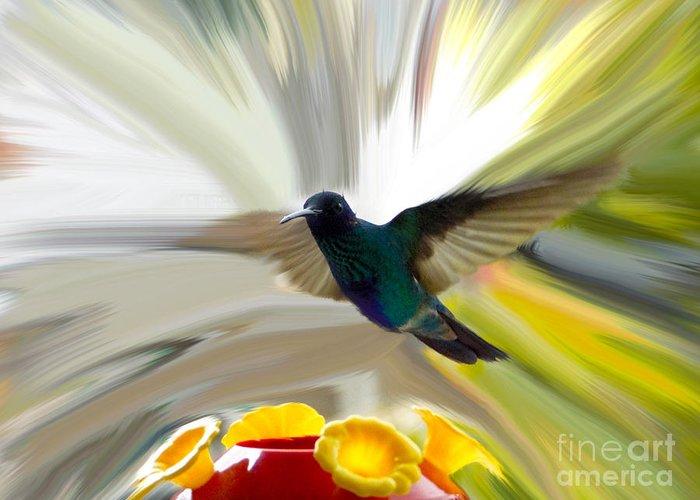 Al Bourassa Greeting Card featuring the photograph Cuenca Hummingbird Series 1 by Al Bourassa