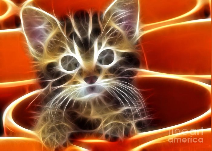 Cat Greeting Card featuring the mixed media Curious Kitten by Pamela Johnson