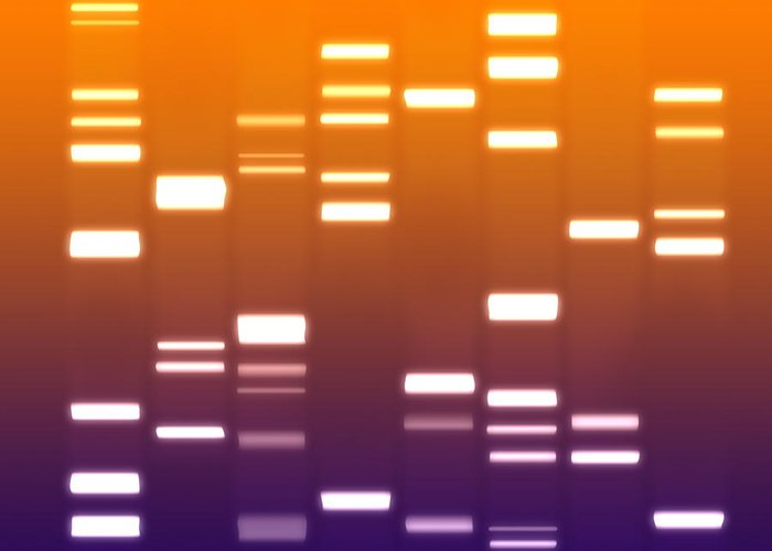 Dna Greeting Card featuring the digital art Dna Purple Orange by Michael Tompsett
