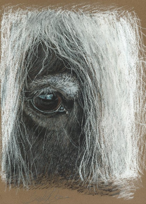Pastel Fine Art Greeting Card featuring the pastel Equine Eye Detail by Terry Kirkland Cook