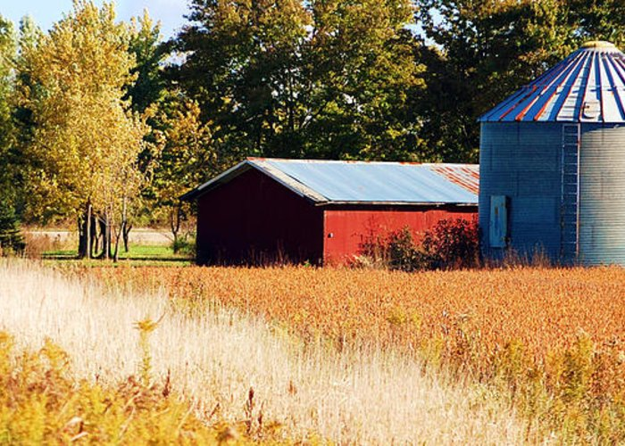 Grain Bin Greeting Card featuring the photograph Fall Bin by Jame Hayes