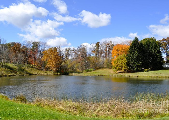 Fall Greeting Card featuring the photograph Fall Pond by Penny Neimiller