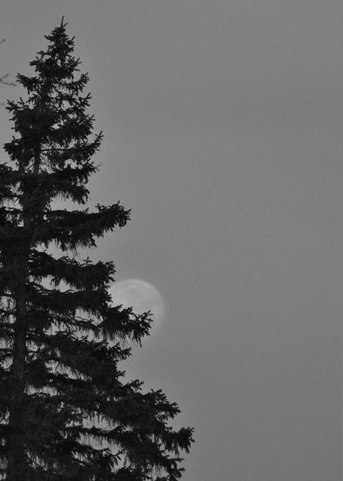 Moon Greeting Card featuring the photograph February Morning Moon by Maria Suhr