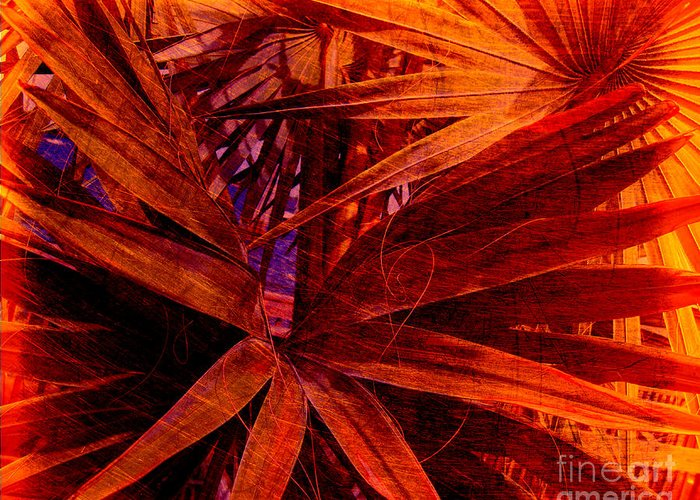 Palm Tree Greeting Card featuring the photograph Fiery Palm by Susanne Van Hulst