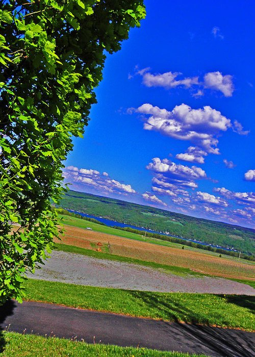 Hillside Greeting Card featuring the photograph Finger Lakes Country by Elizabeth Hoskinson