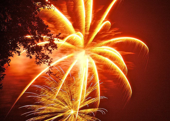 July 4th Greeting Card featuring the photograph Fire In The Trees by Phill Doherty