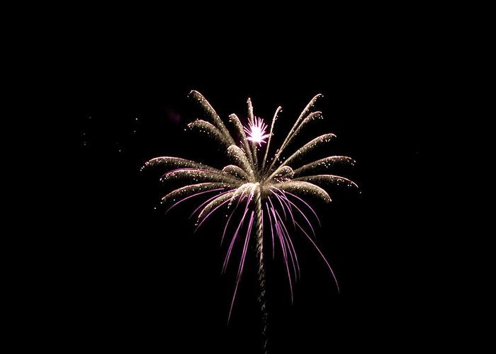 Fireworks Greeting Card featuring the photograph Flower Of Lights by Kelly Schuler