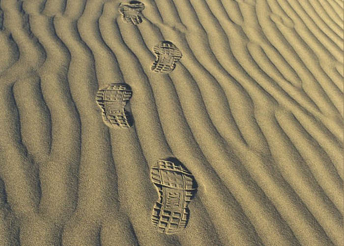 Footprints Greeting Card featuring the photograph Footprints In The Sand by Joe Palermo