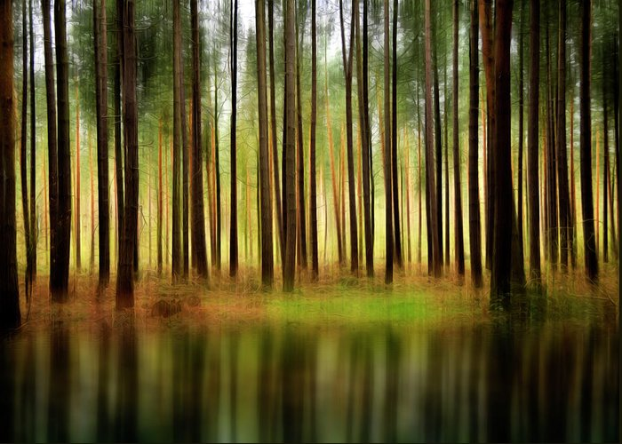 Forest Greeting Card featuring the photograph Forest Abstract by Svetlana Sewell