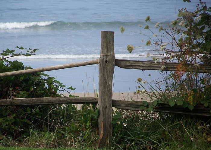 Fence Greeting Card featuring the photograph Forgotten Getaway by Angi Parks