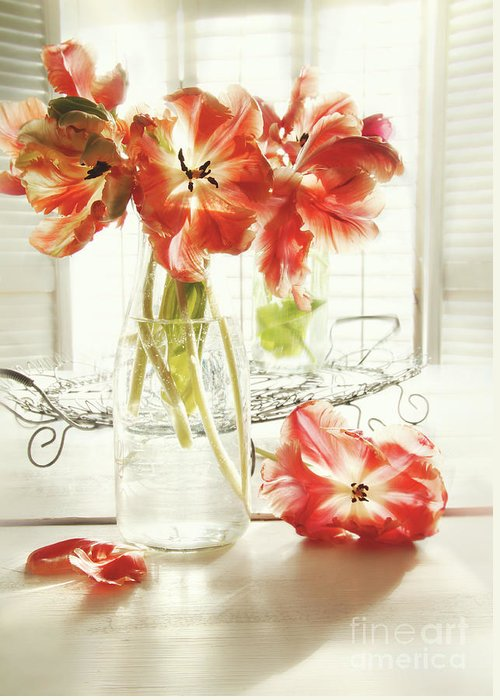 Background Greeting Card featuring the photograph Fresh Spring Tulips In Old Milk Bottle by Sandra Cunningham