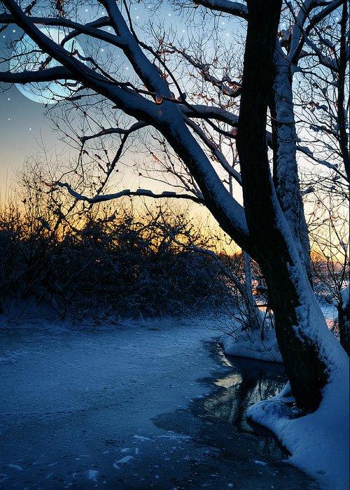 Beautiful Greeting Card featuring the photograph Frozen River by Jaroslaw Grudzinski
