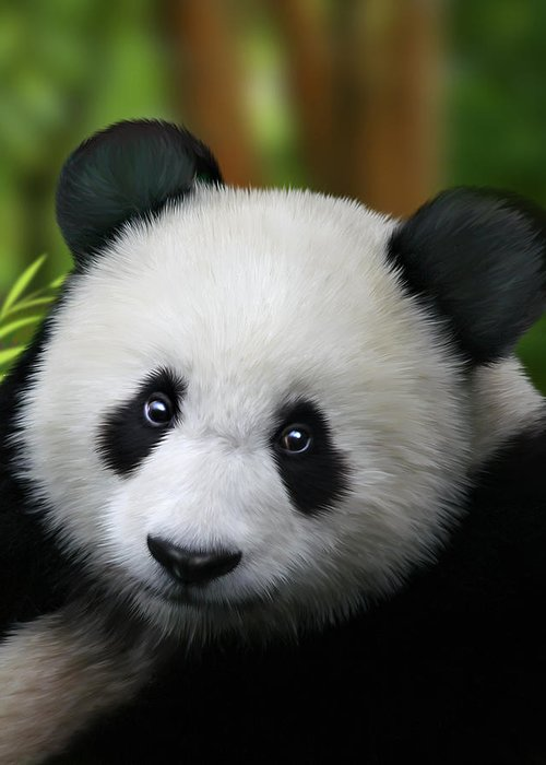 Giant Panda Greeting Card featuring the digital art Giant Panda by Julie L Hoddinott