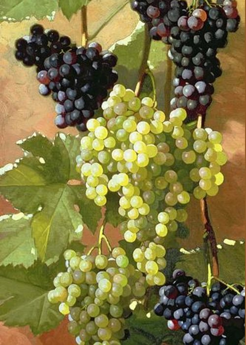 Grapes Greeting Card featuring the painting Grapes by Edward Chalmers Leavitt
