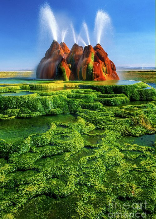 America Greeting Card featuring the photograph Green Fly Geyser by Inge Johnsson