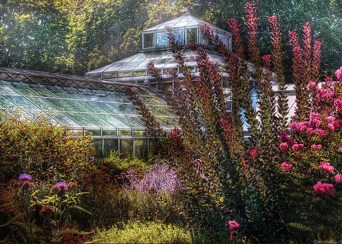 Savad Greeting Card featuring the photograph Greenhouse - The Greenhouse by Mike Savad