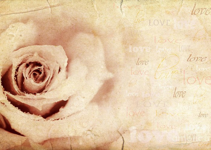 Anniversary Greeting Card featuring the photograph Grungy Rose Background by Anna Omelchenko