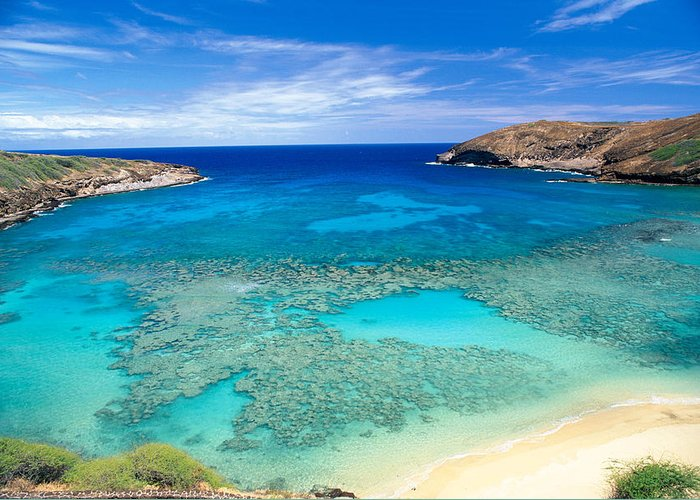 Above Greeting Card featuring the photograph Hanauma Bay by Peter French - Printscapes