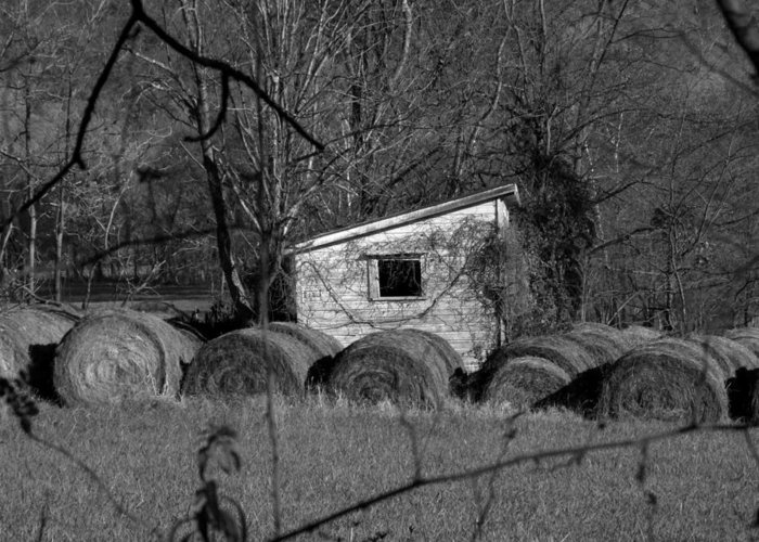 Hay Greeting Card featuring the photograph Hayroll Shed 2 by Michael L Kimble