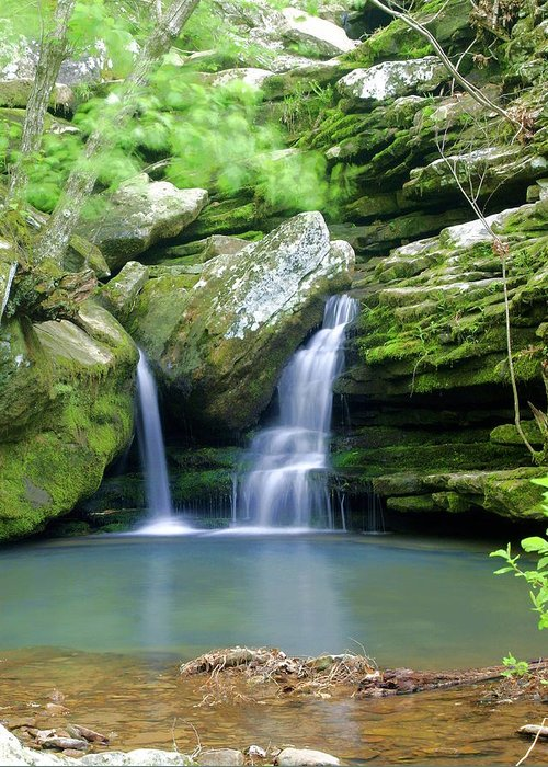 Waterfall Greeting Card featuring the photograph Hidden Falls 2 by Marty Koch