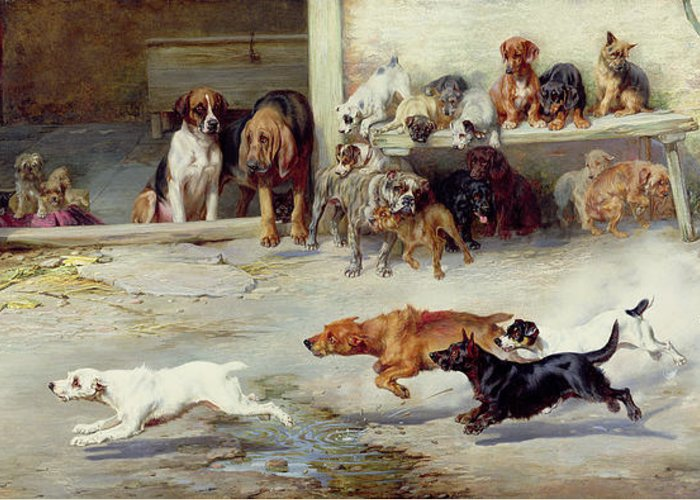 Race; Dog; Breeds; Jack Russell; Poodle; Dachshund; Bloodhound; Boxer; Cairn; Springer Spaniel; Pug Greeting Card featuring the painting Hot Pursuit by William Henry Hamilton Trood