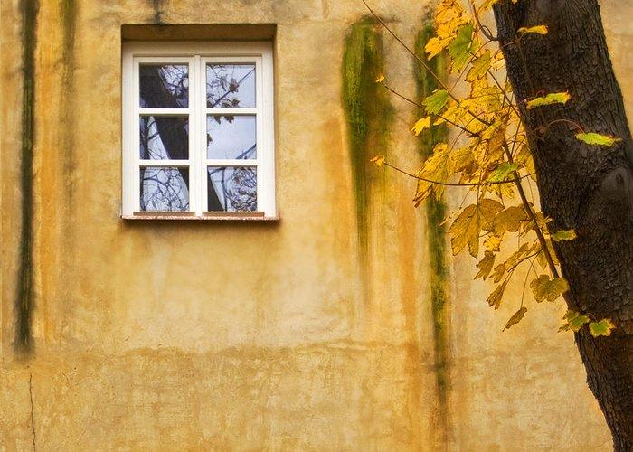 Fenster Greeting Card featuring the photograph Ich Warte Unten by Renata Vogl