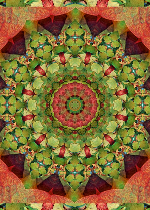 Mandalas Greeting Card featuring the photograph Illumination by Bell And Todd