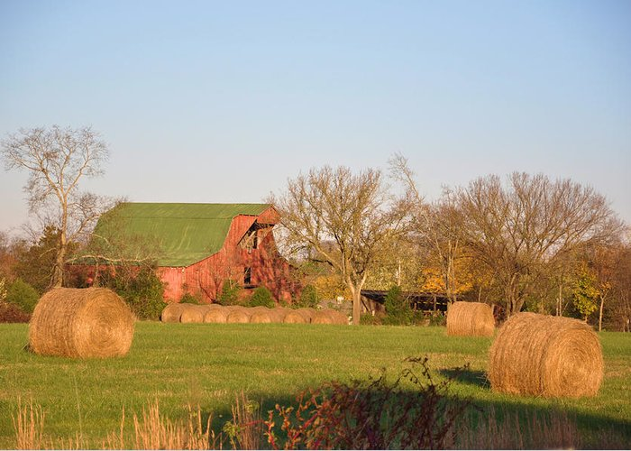 Landscapes Greeting Card featuring the photograph It's A Sunny Day by Jan Amiss Photography